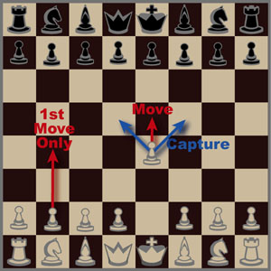 Intuitor Chess Instructions for Beginners