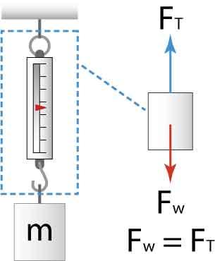 scaleFBD0 scale problem
